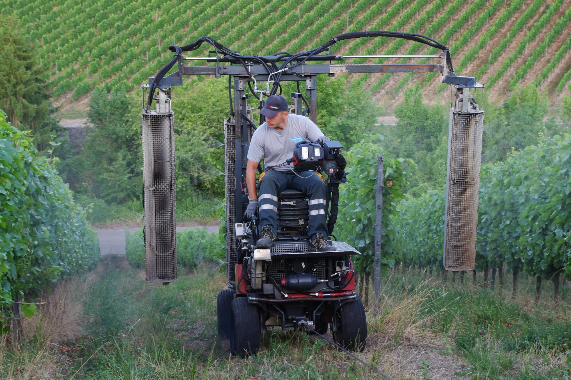 Steillagenmechanisierungssystem im Weinberg