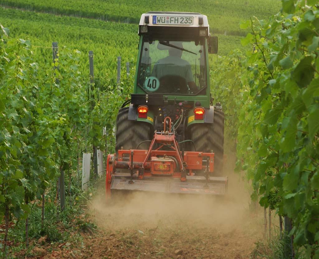 Bodenbearbeitung im Weinberg